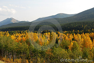 Autumn mountains and forests