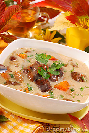 Free Autumn Mushroom Soup With Cream Stock Images - 16122834