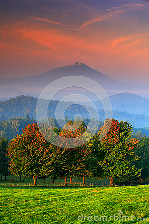 Free Autumn Orange Colour On The Tree. Cold Misty Foggy Morning In A Fall Valley Of Bohemian Switzerland Park. Hills With Fog, Landscap Royalty Free Stock Photos - 75947148