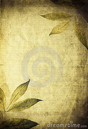 Autumn organic collage