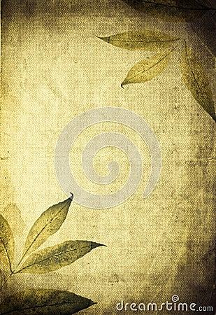 Autumn organic collage