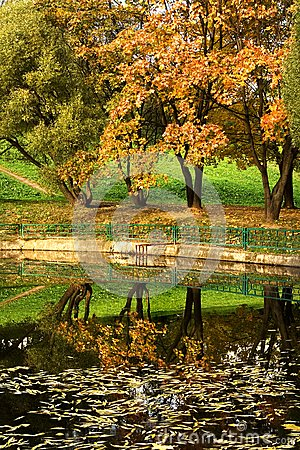 Autumn park 11