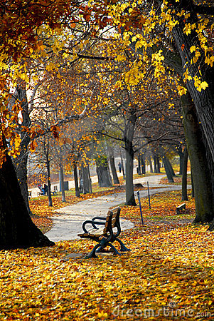 Free Autumn Park Royalty Free Stock Images - 1513499