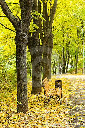 Free Autumn Park Royalty Free Stock Photography - 16656937