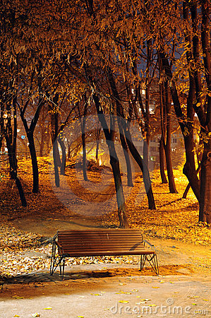 Free Autumn Park Bench. Night Shoot Stock Photography - 7076572