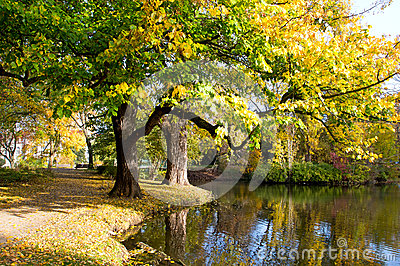 Autumn park in the city  Hanover