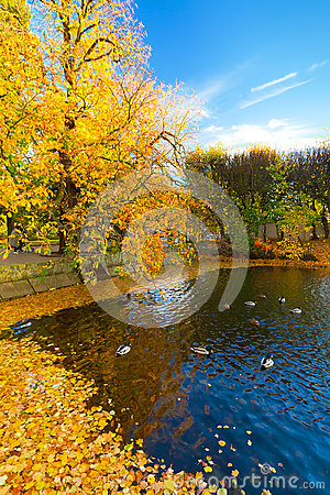 Autumn in the park in Gdansk