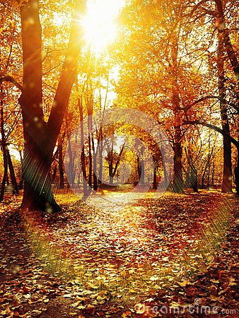 Free Autumn Park Path Stock Images - 27868314