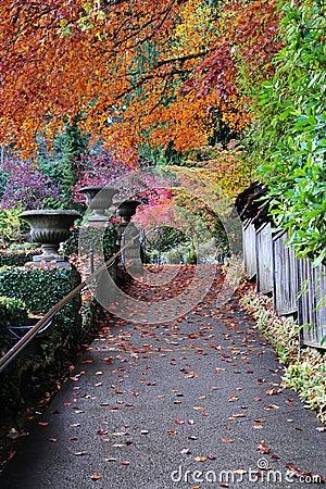 Autumn path in butchart gardens