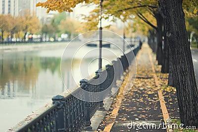 Autumn path by urban river