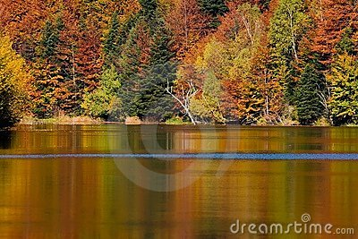 Autumn on peaceful lake