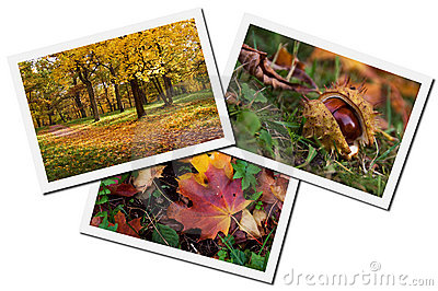 Autumn photos collage