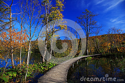 Autumn in Plitvice