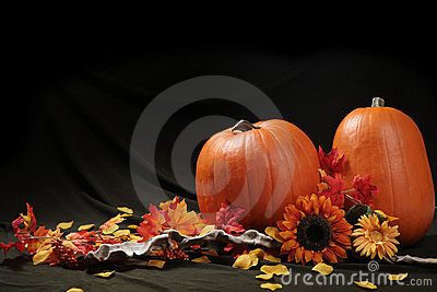 Autumn pumpkin still life