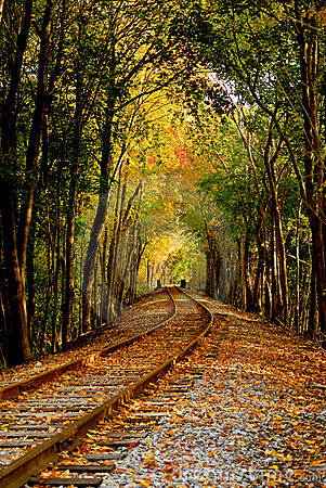 Free Autumn Railroad Stock Images - 1421404