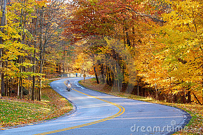 Autumn road with biker