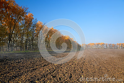 Autumn rural landscape with plowed field