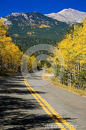 Free Autumn Rural Mountain Road Royalty Free Stock Photo - 18025595