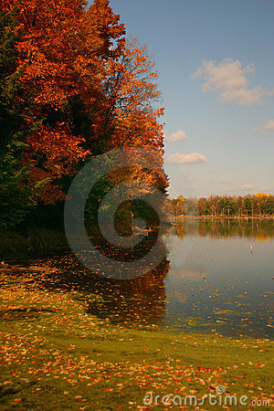 Free Autumn S Colors Royalty Free Stock Photography - 109387