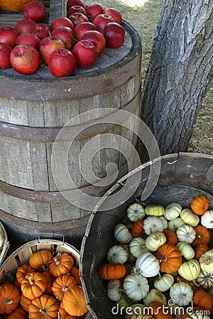 Autumn s harvest