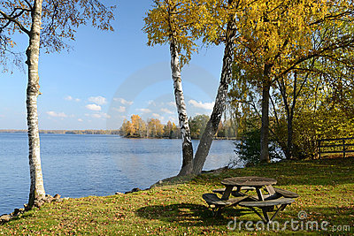 Autumn s lake with bench