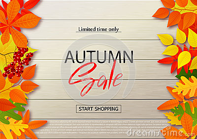 Autumn sale poster with fall leaves on wooden backgrounds. Vector illustration for website and mobile website banners Vector Illustration