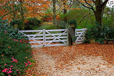 Autumn Scene Stock Photos - Image: 15010153