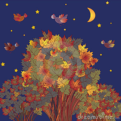 Image result for birds in autumn