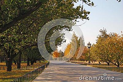 Autumn scenery in Beijing