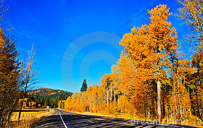 Autumn scenery, fall foliage, Washington