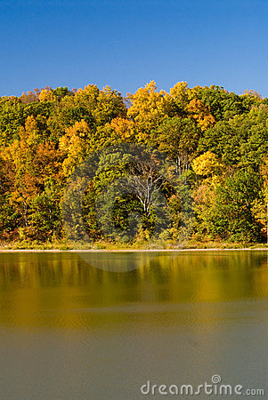 Autumn scenery by lake