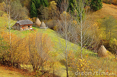 Autumn scenery in the mountains of Romania