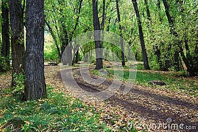 Autumn scenery of northern Utah