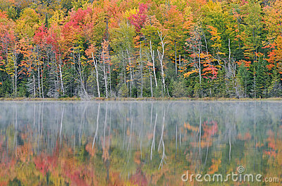 Autumn, Scout Lake