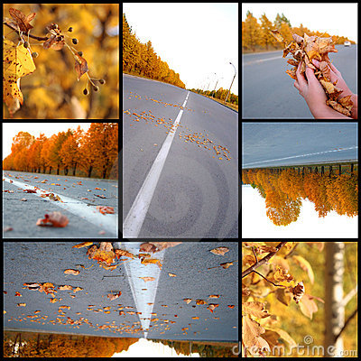 Autumn season beautiful, collage