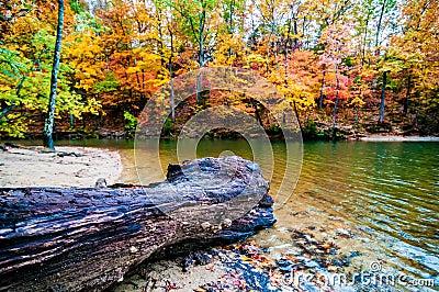 Autumn season at a lake