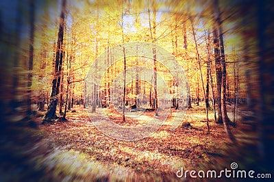 Autumn season mood