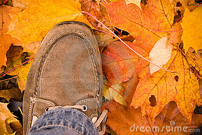 Autumn shoes