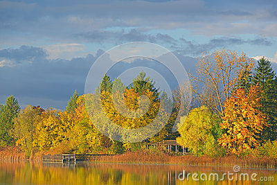 Autumn Shoreline