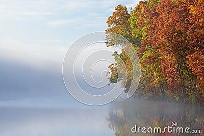 Autumn Shoreline in Fog