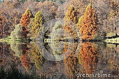 Autumn Sibiu
