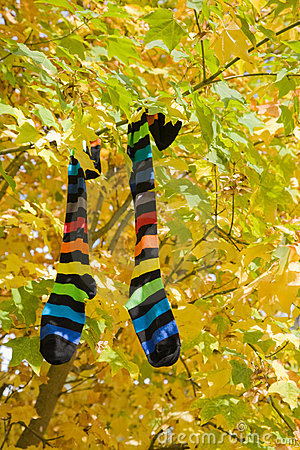Autumn socks
