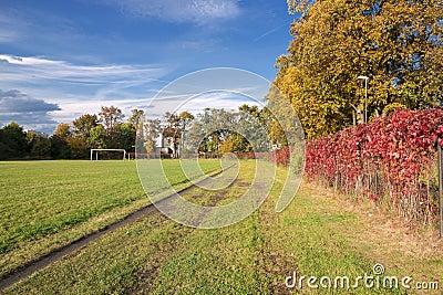 Autumn sports field.