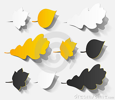 Autumn sticker realistic object shadow leaf set