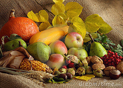 Autumn Still-life