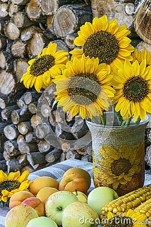 Free Autumn Still Life On Background Of Woodpile Stock Photos - 58373583