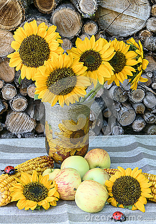 Free Autumn Still Life On Background Of Woodpile Royalty Free Stock Photo - 58373725