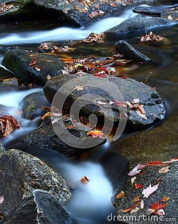 Free Autumn Stream, Western North Carolina Royalty Free Stock Image - 13016966