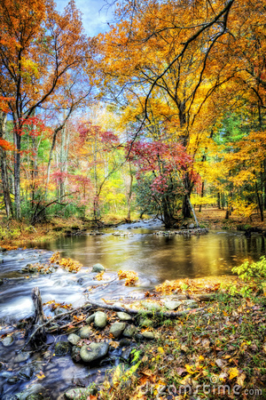 Free Autumn Stream With Mossy Rocks Stock Photo - 16735470
