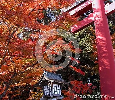 Autumn temple gate